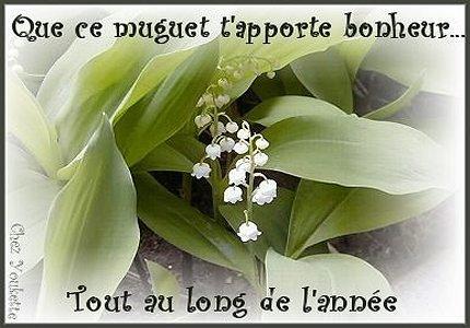 muguet2.jpg